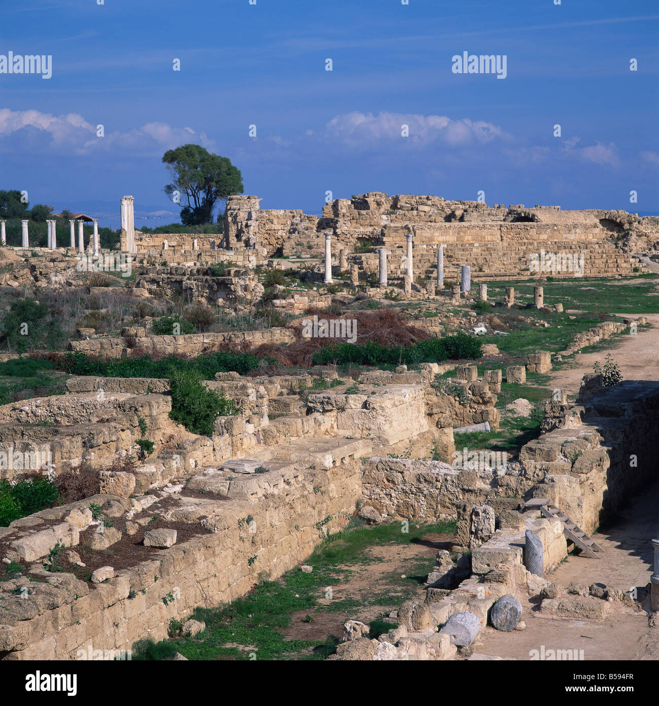 Roman odeon concert venue and Hellenistic Roman gymnasium in Salamis the main city of Cyprus 1075 BC to 650 AD North - Stock Image