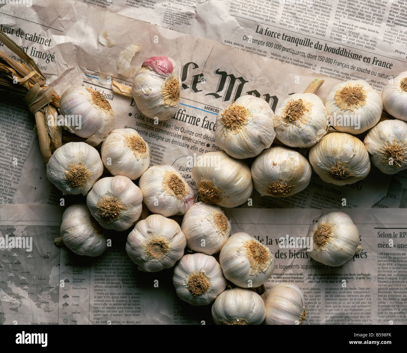 Strings of garlic spread out on Le Monde newspaper in France L Frost - Stock Image