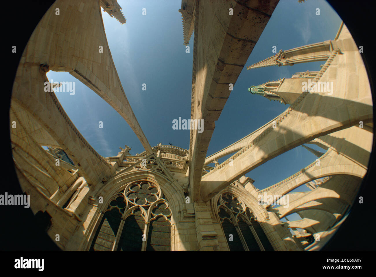 Fish eye lens view of the flying butresses of Notre Dame Cathedral, Paris, France, Europe - Stock Image