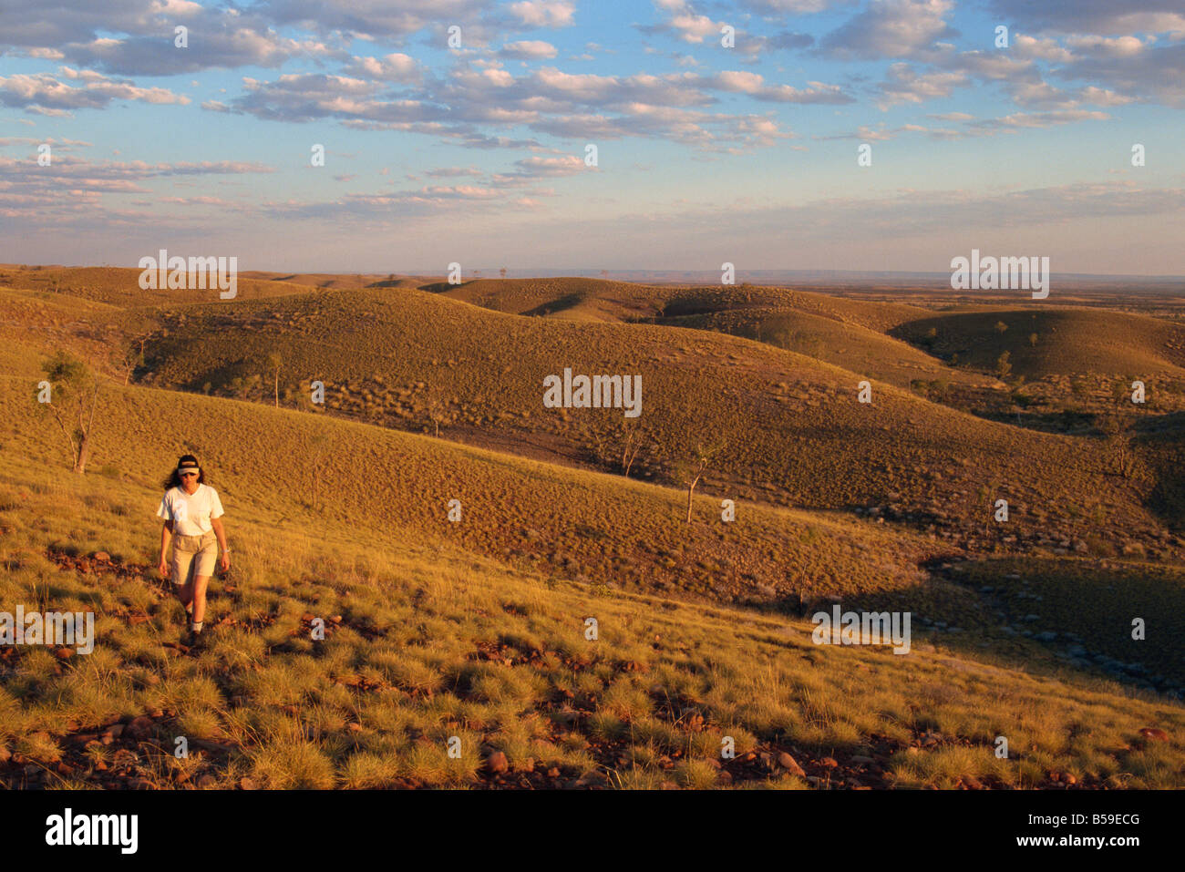 Tyler Pass, West Macdonnell National Park, Northern Territory, Australia, Pacific - Stock Image