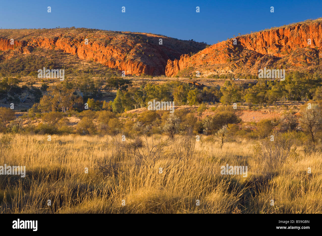 Glen Helen Gorge, West MacDonnell National Park, Northern Territory, Australia, Pacific - Stock Image