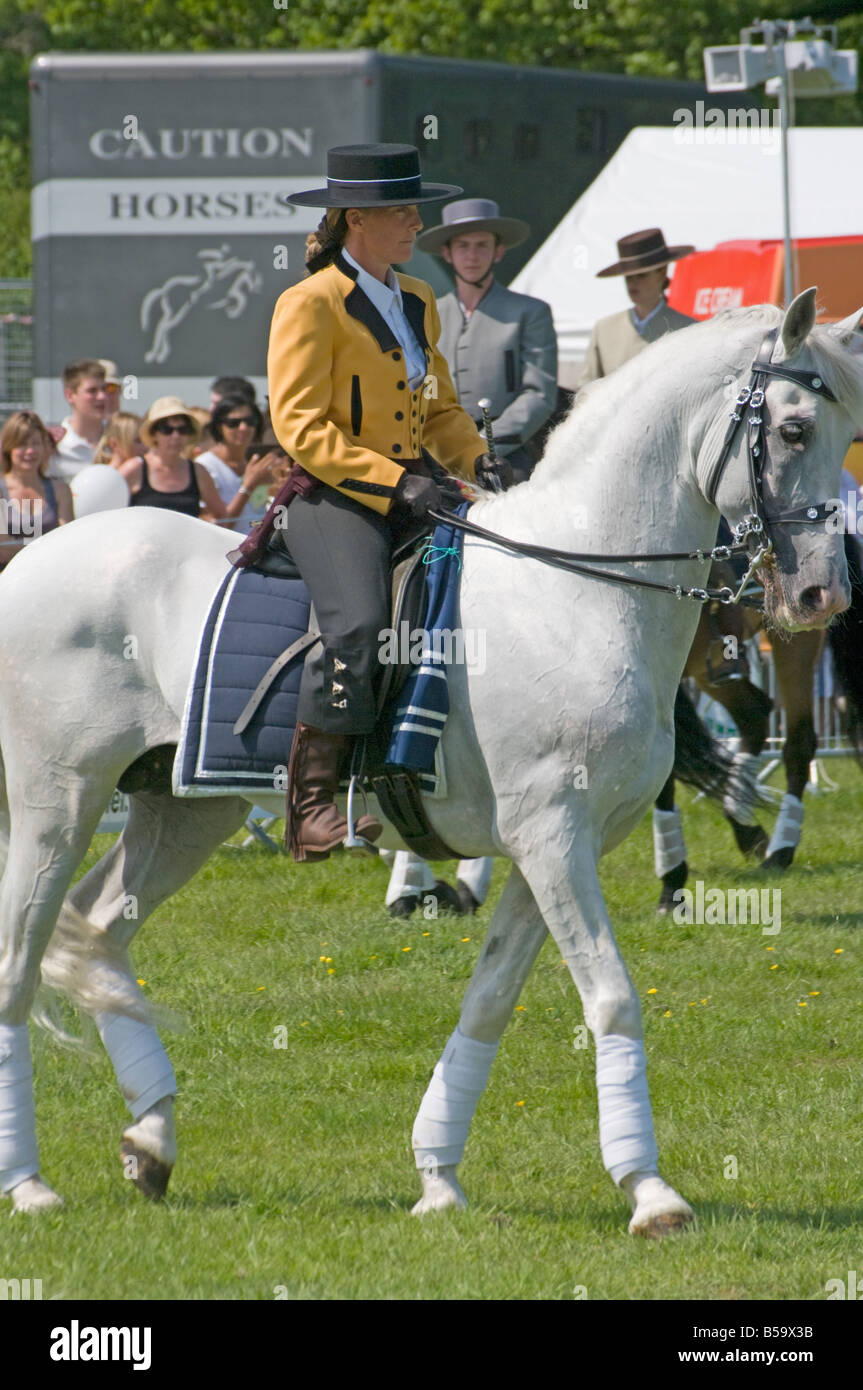 Andalusian Stallion with a Female Rider In Traditional Costume person Woman Female Riding White Horse - Stock Image