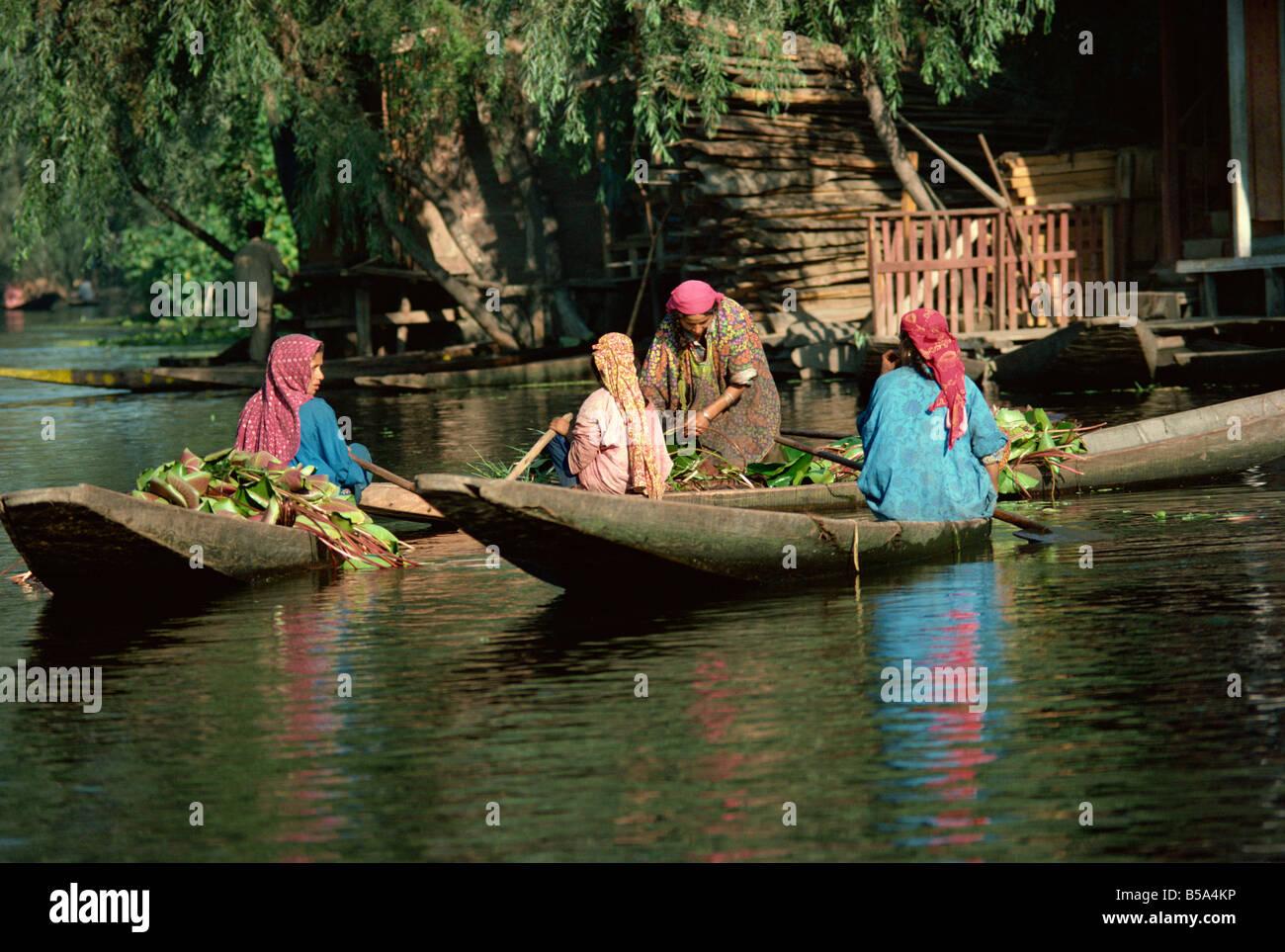 Kashmiri women Dal Lake Srinagar Kashmir India Asia - Stock Image