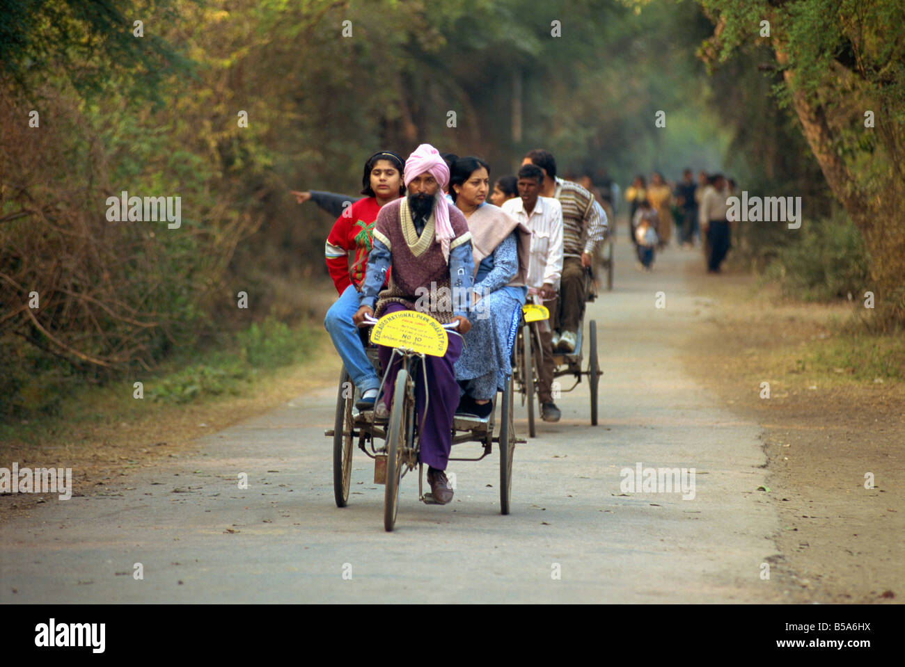 Transport in the wildlife sanctuary Bharatpur Rajasthan state India Asia - Stock Image