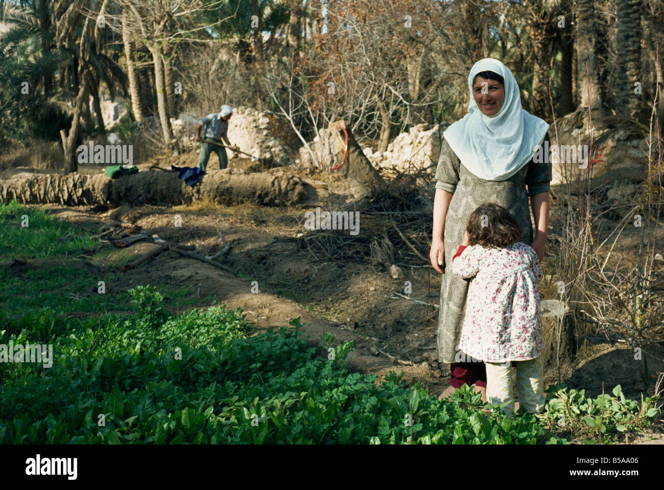 Farmers in field on Qa'lat 'Ana, taken in 1981, Iraq, Middle East - Stock Image