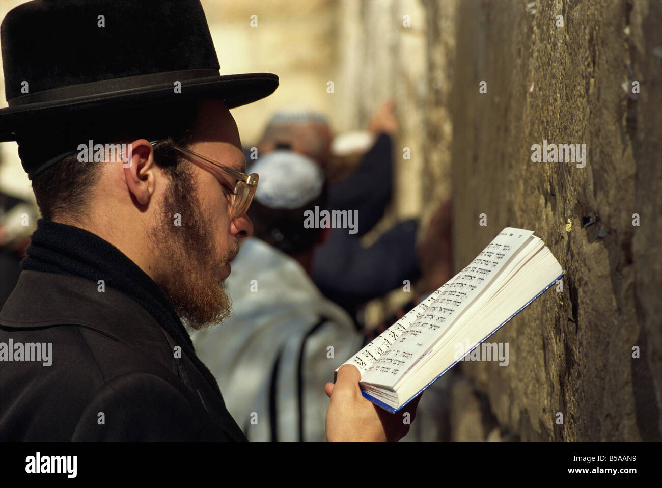 Close-up of Orthodox Jew praying with a book in his hand at the Western Wall in Jerusalem, Israel, Middle East - Stock Image