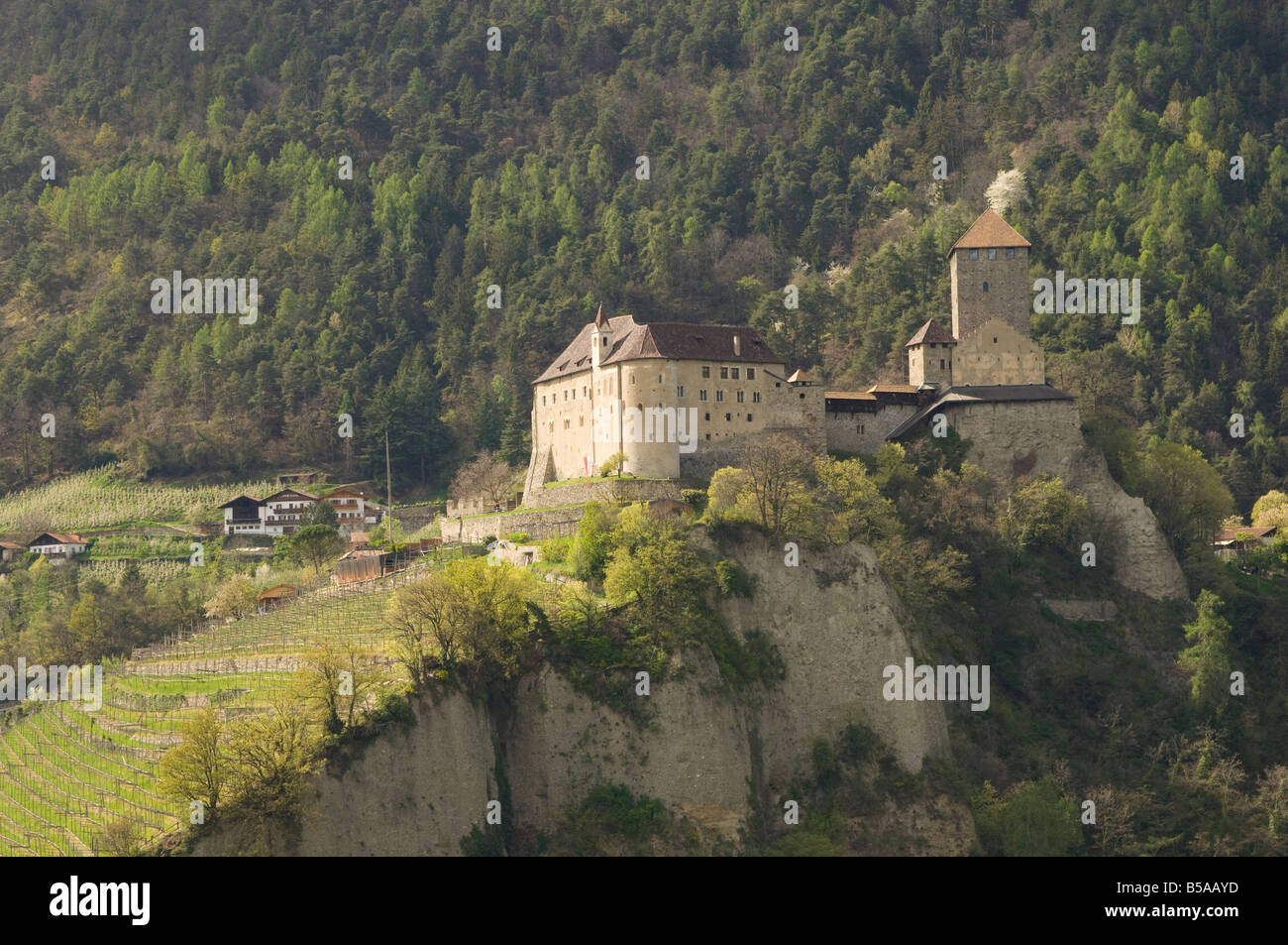 The Castle at Dorf Tyrol, Sud Tyrol, Italy, Europe - Stock Image