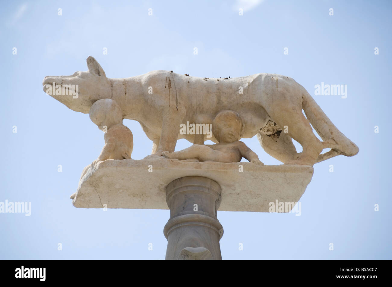 Statue depicting Romulus and Remus and the she-wolf, Duomo (Cathedral), Siena, Tuscany, Italy, Europe - Stock Image