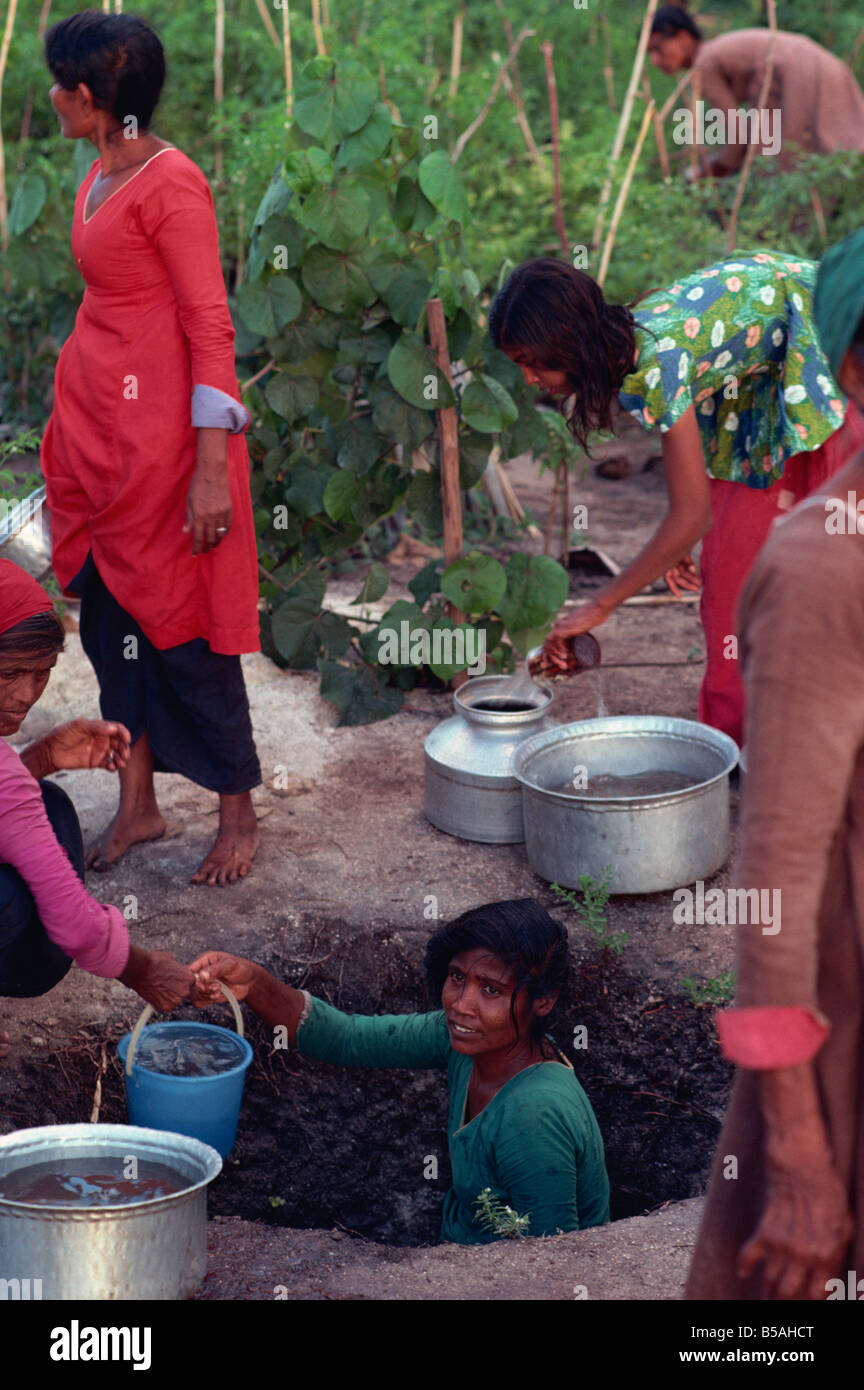 Collecting water for agriculture, Maldive Islands - Stock Image