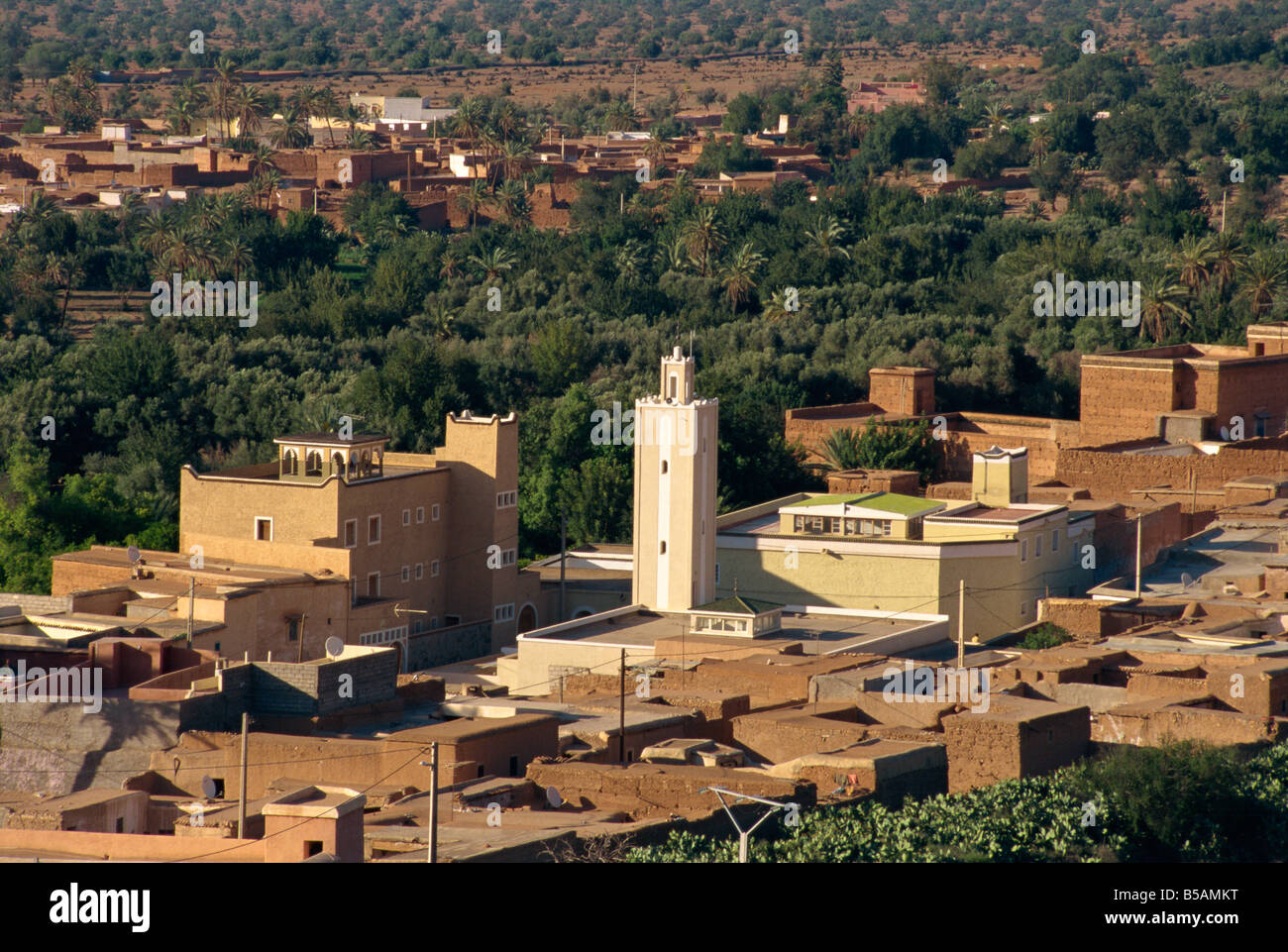 View over the small town of Tioute, with substantial palmery near Taroudant, Morocco, North Africa, Africa - Stock Image