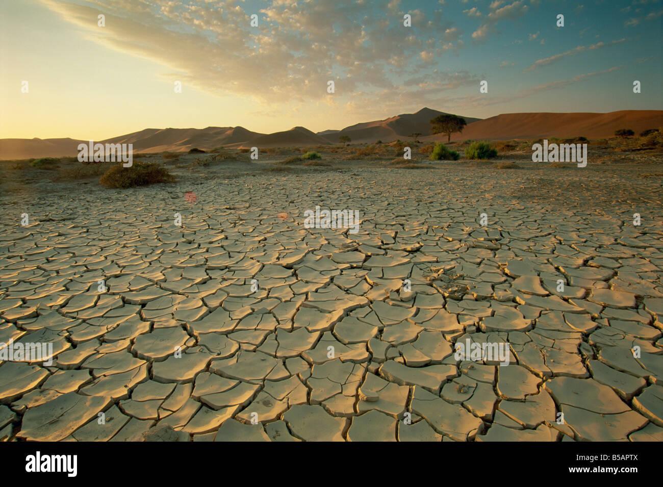Sunbaked mud pan cracked earth near Sossusvlei Namib Naukluft Park Namibia Africa - Stock Image