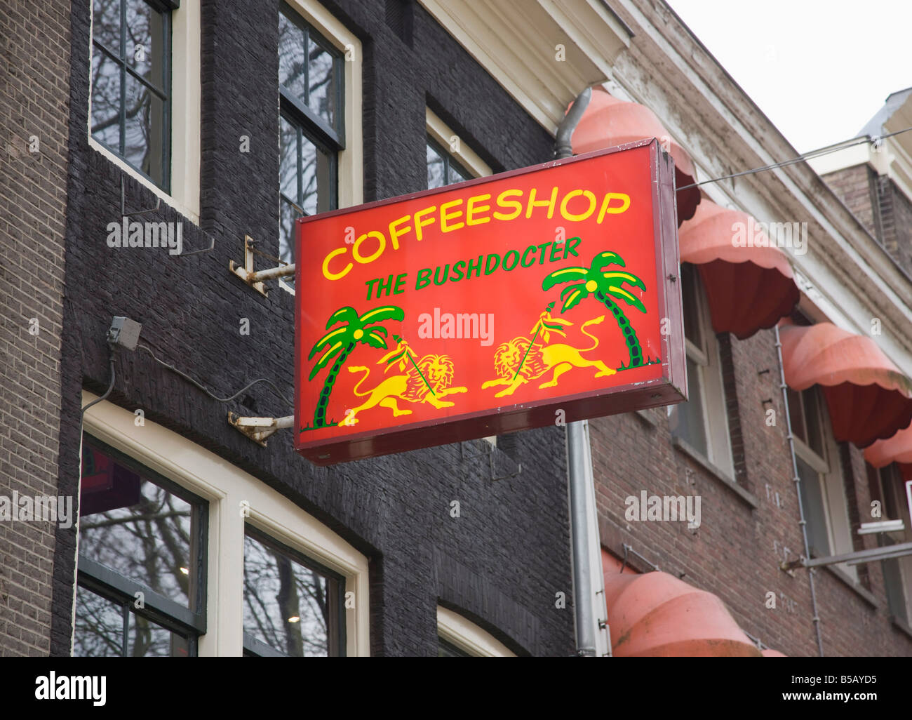 One of the many coffee shops where cannabis can legally be bought and consumed, Amsterdam, Netherlands, Europe - Stock Image
