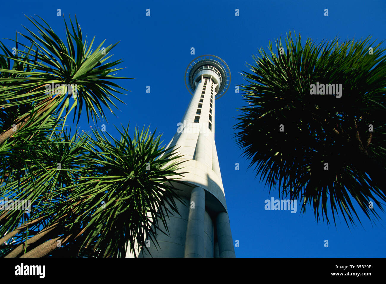 The Sky City Tower, Auckland, North Island, New Zealand, Pacific Stock Photo