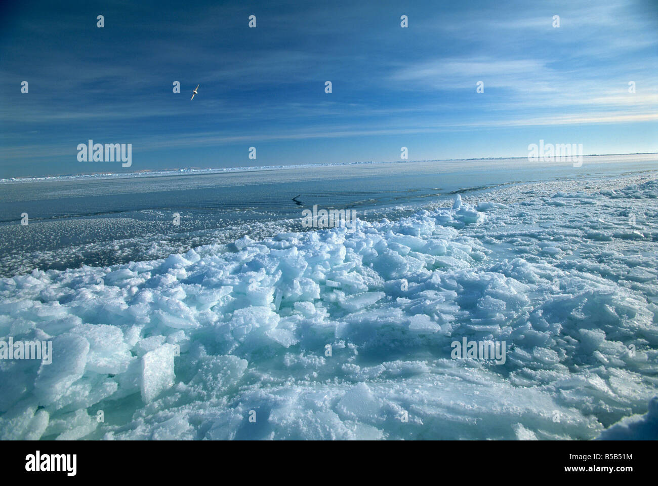 Fractured ice and newly frozen ice at edge of an open lead, Spitsbergen, Svalbard, Arctic, Norway, Scandinavia - Stock Image