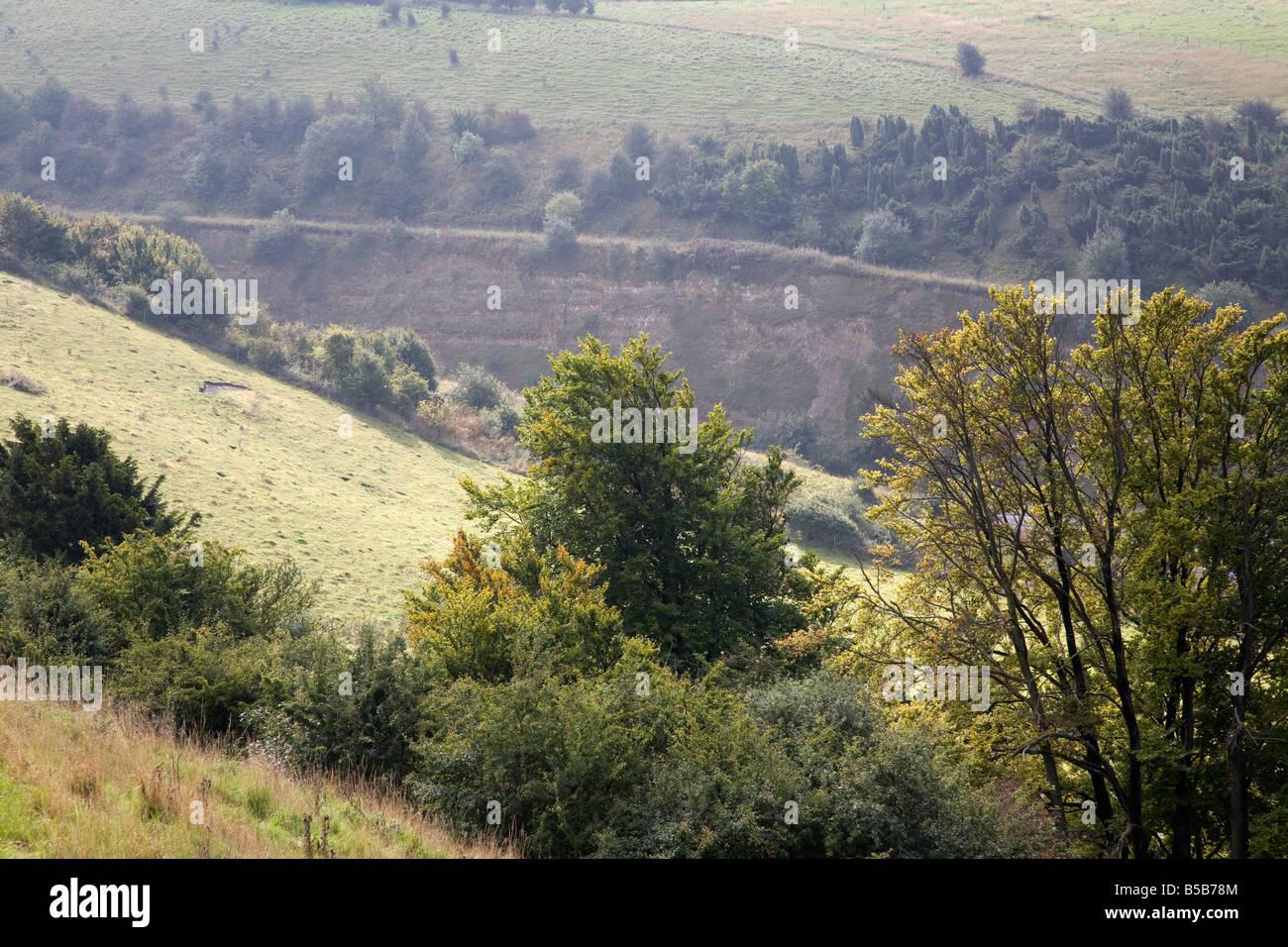 aston rowant chilterns oxfordshire - Stock Image