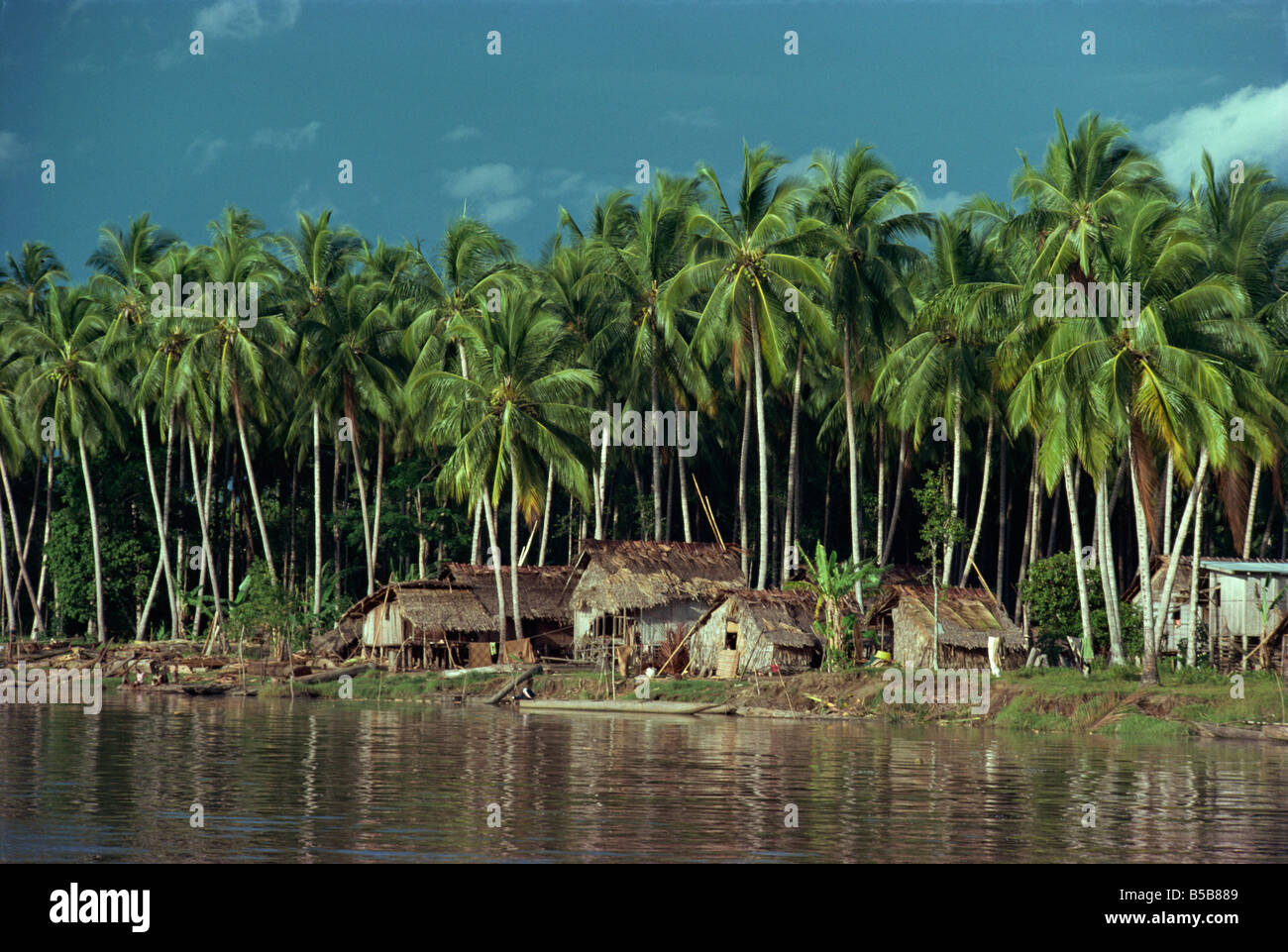 A riverside village beneath palm trees in the Gulf Province of Papua New Guinea Pacific Islands I Griffiths - Stock Image