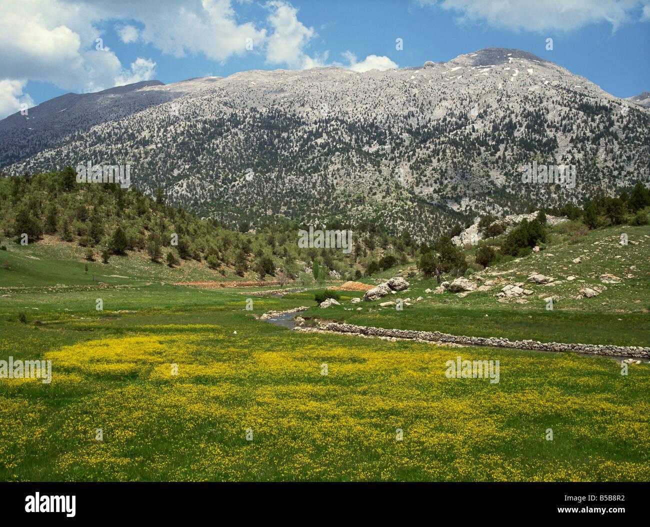 Springtime in the hills near Guzelyurt, south of Nevsehir, Anatolia, Turkey Minor, Eurasia - Stock Image