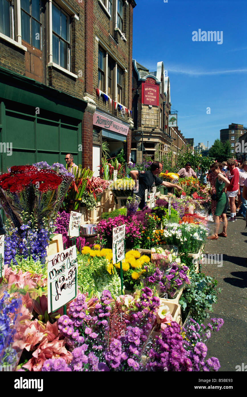Vibrant displays of cut flowers at East End's Sunday flower market, Columbia Road, London, England, Europe Stock Photo