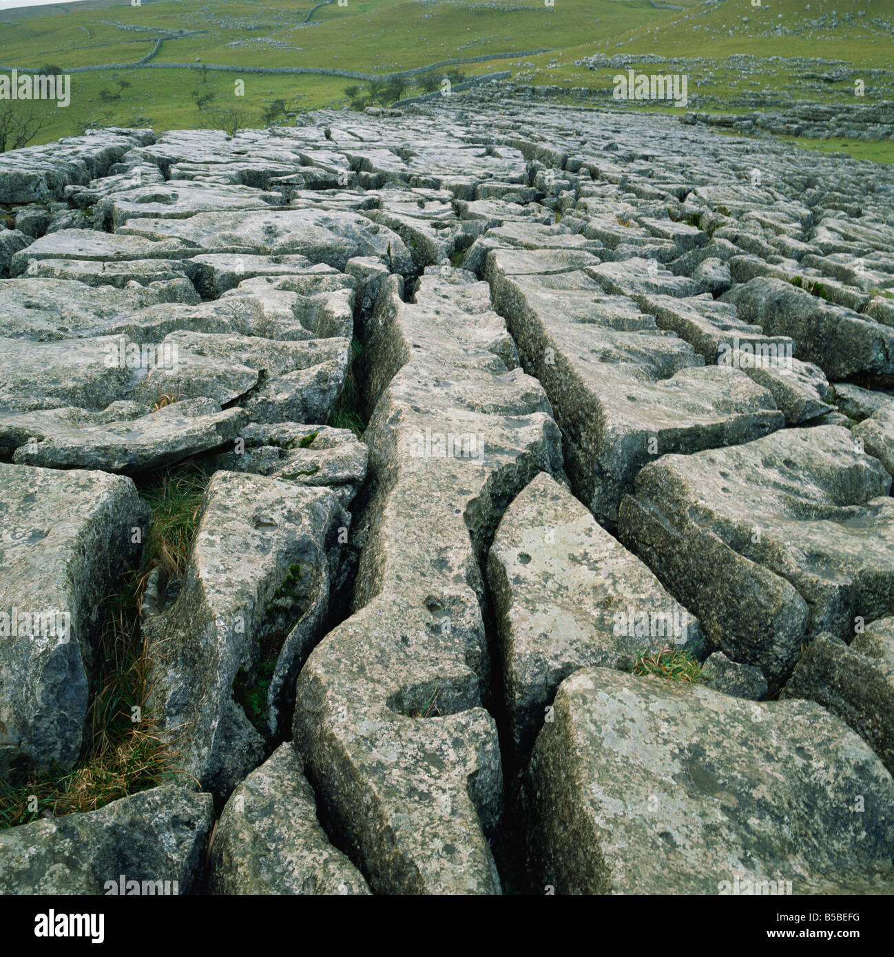 Limestone pavement, Malham, Yorkshire Dales National Park, North Yorkshire, Yorkshire, England, Europe - Stock Image