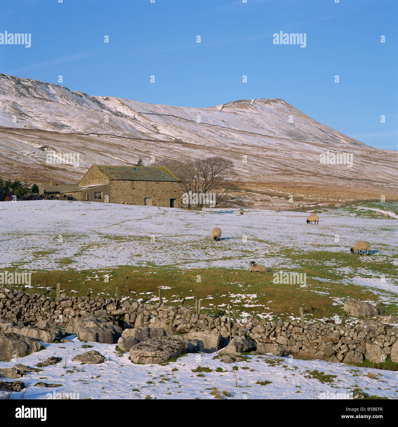 Yorkshire Dales in winter, North Yorkshire, England, Europe - Stock Image