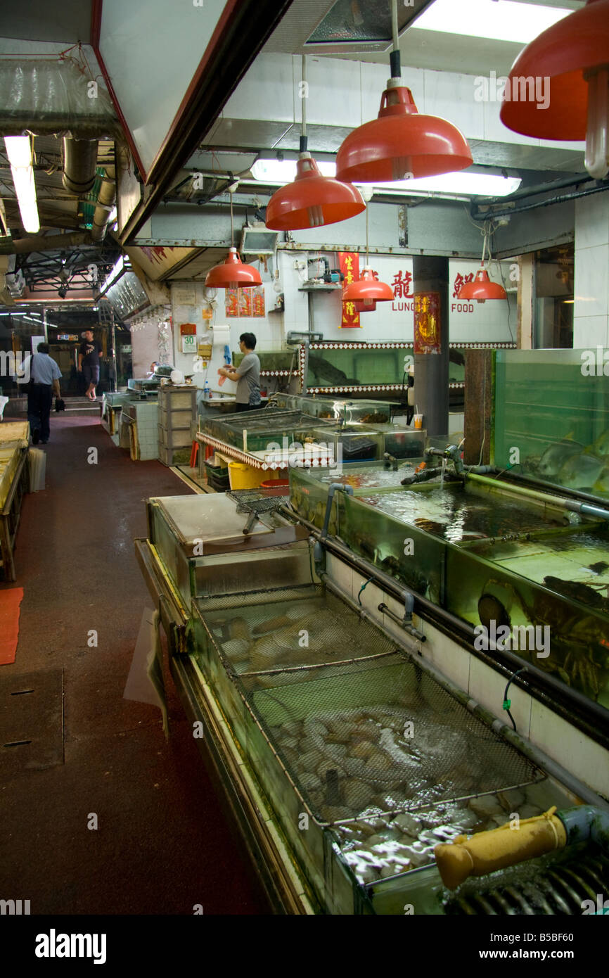 Fish tanks with live fish and seafood, Lei Yue Mun seafood village, Hong Kong - Stock Image
