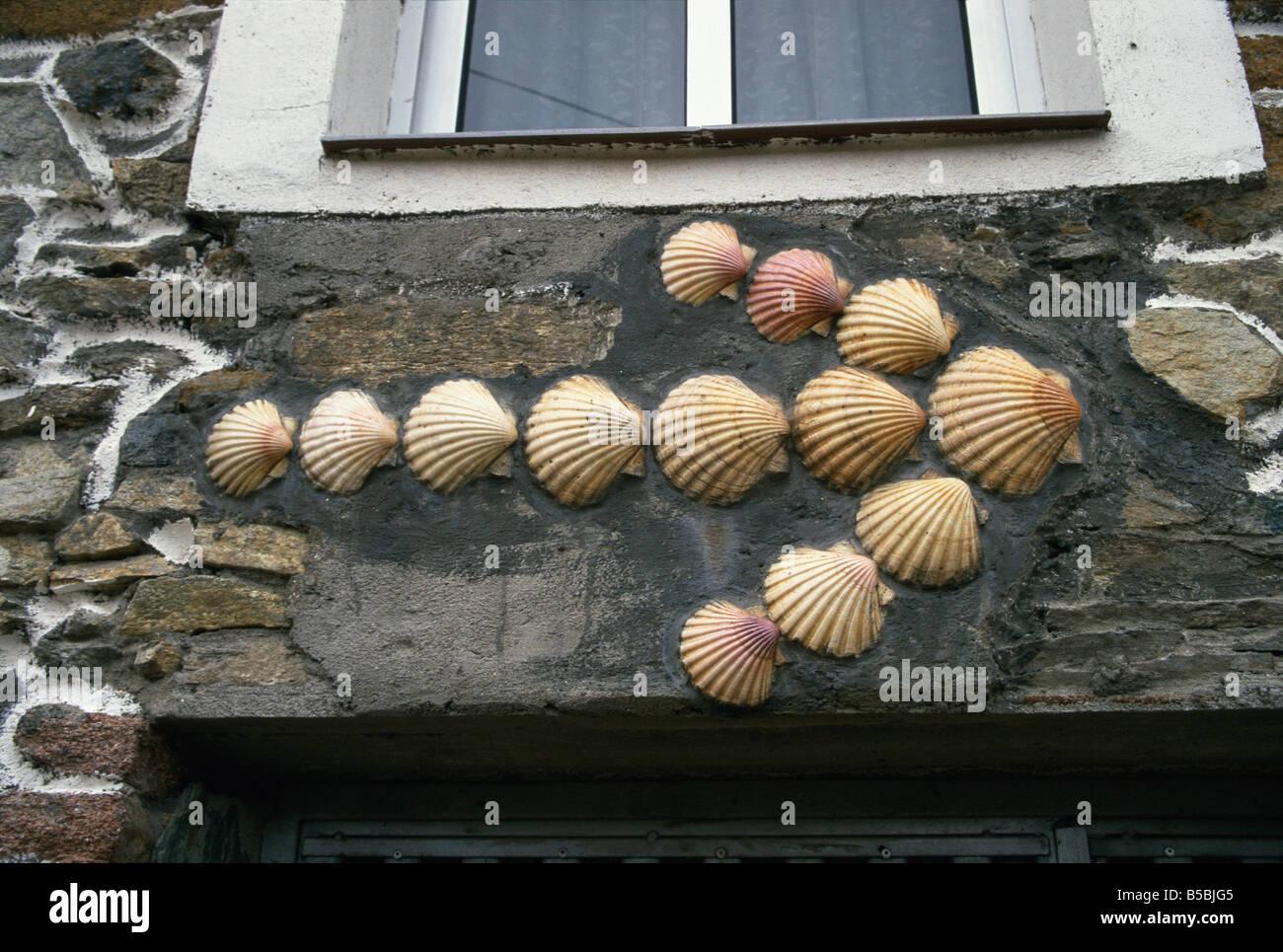 Camino Scallop Shells Stock Photos Camino Scallop Shells Stock