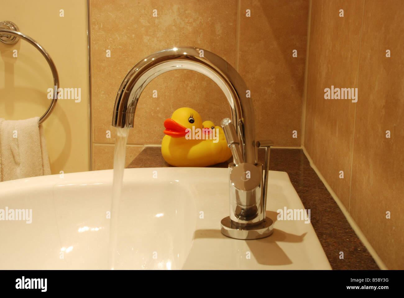 Bathroom Ducks Stock Photos & Bathroom Ducks Stock Images - Alamy