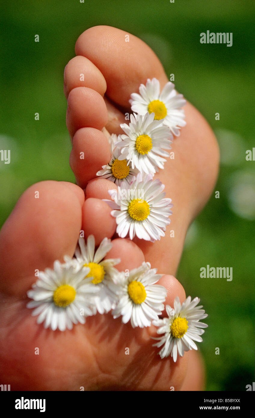Springtime - feet with daisies between toes in the spring season - Stock Image