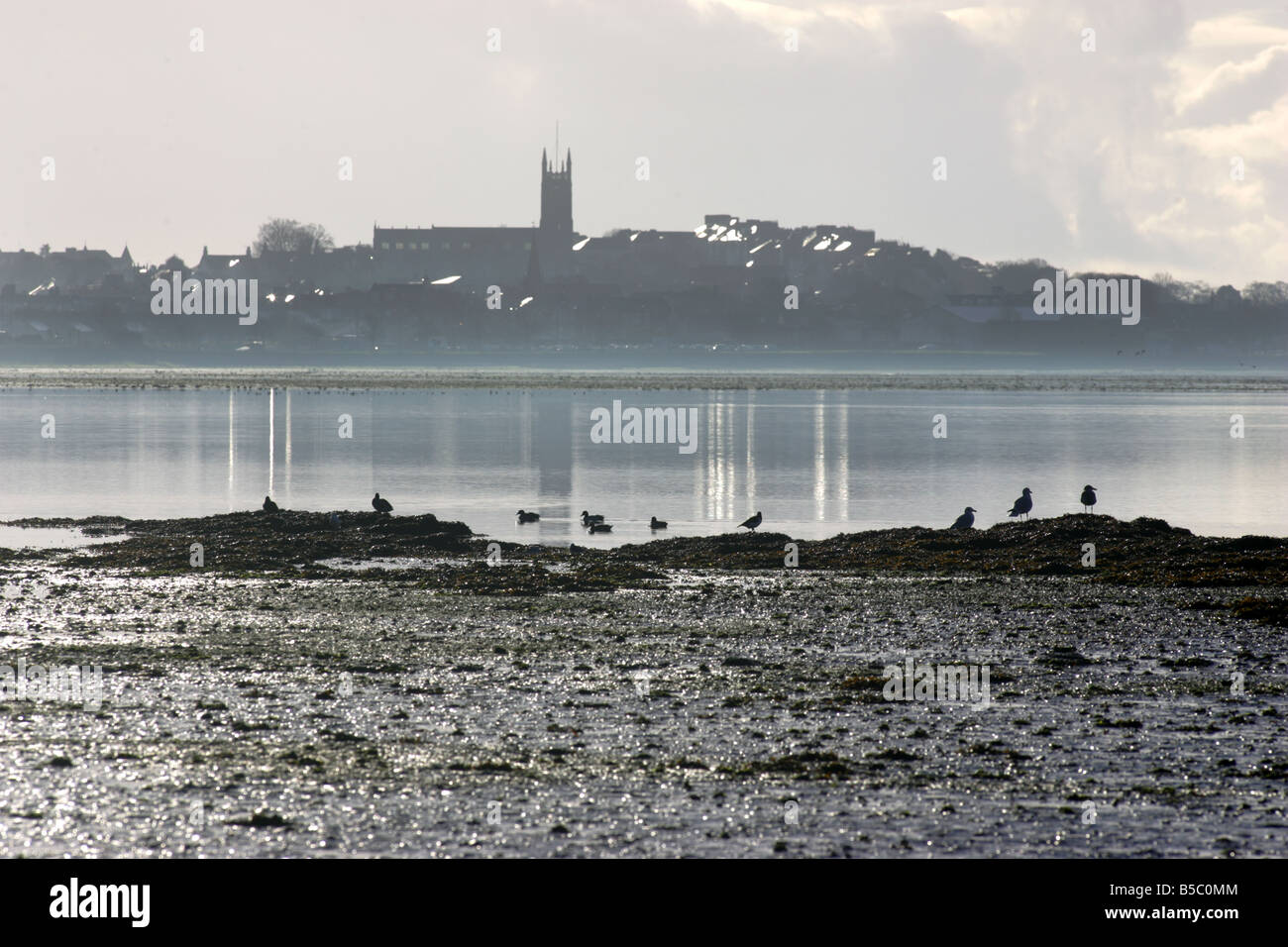 View of Exmouth over the Exe Estuary, Devon - Stock Image