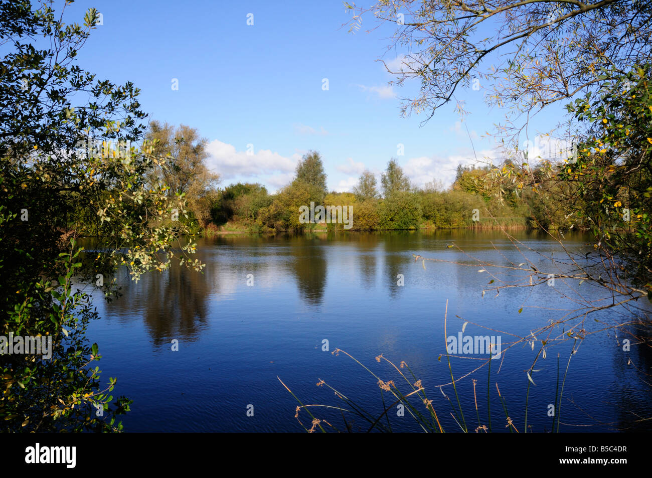 Milton Country Park, Cambridgeshire, England UK - Stock Image