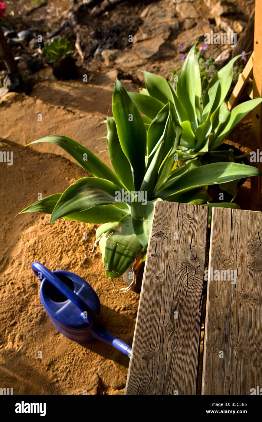 A veranda with table and watering can on the island of La Palma in the Canary Islands, Spain. Stock Photo