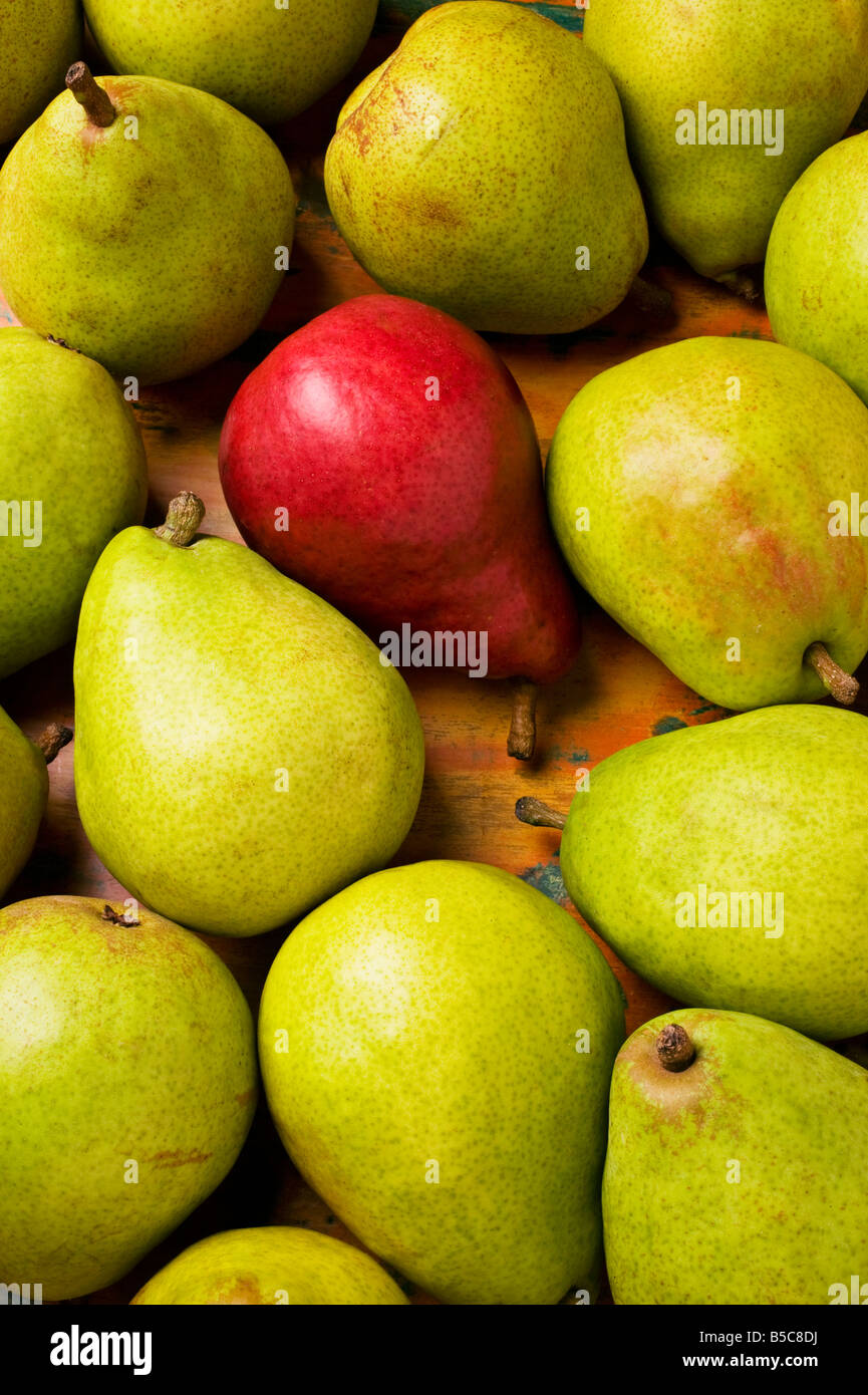Red and green pears - Stock Image