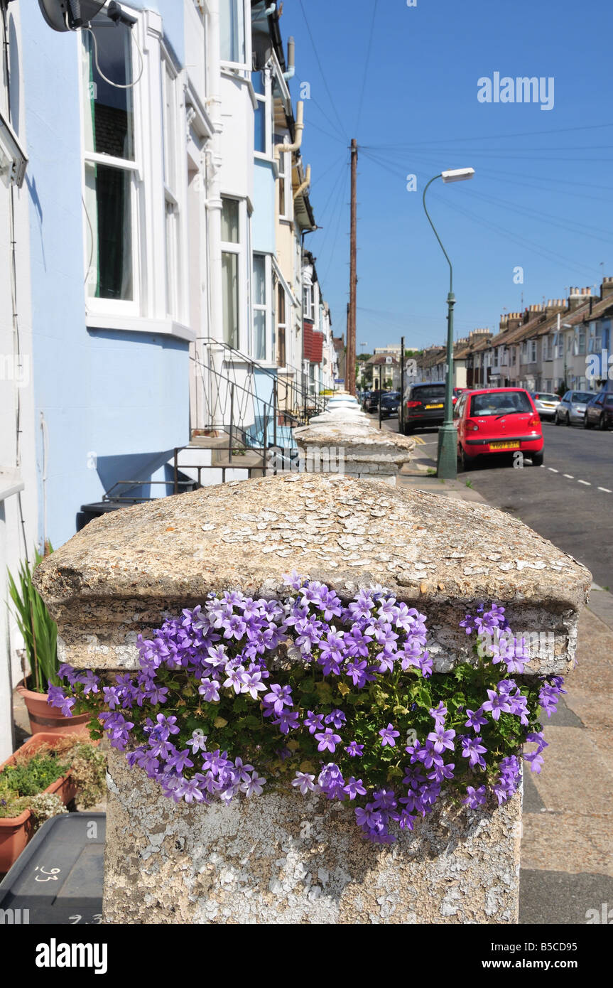 English street scene in summer, Brighton and Hove, East Sussex, England - Stock Image
