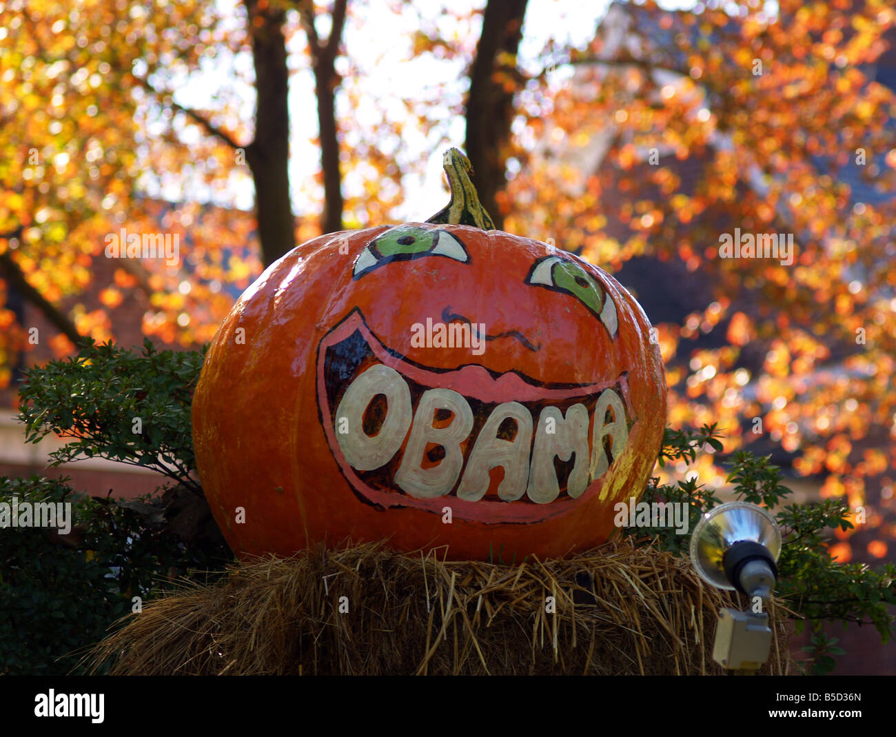 Autumn decorations incorporate support for Barack Obama. - Stock Image