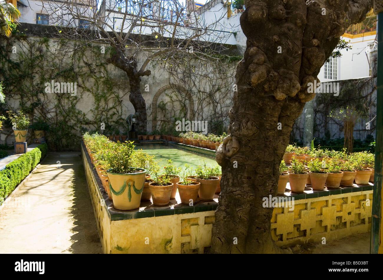 Gardens in the Casa de Pilatos, Santa Cruz district, Seville Stock ...