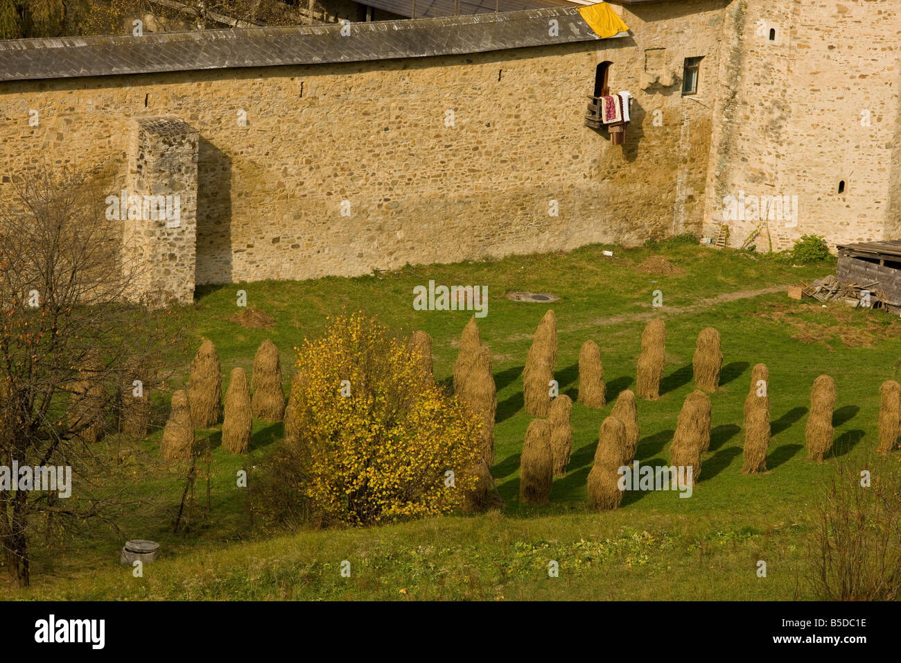 Hay stooks outside the fortified wall of Sucevita Painted Monastery Southern Bucovina north Romania - Stock Image