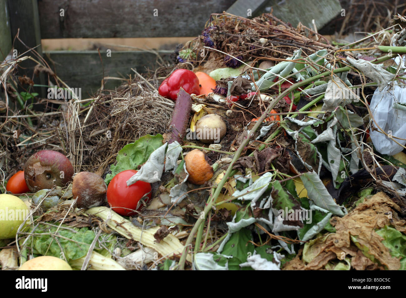 Compost heap - Stock Image