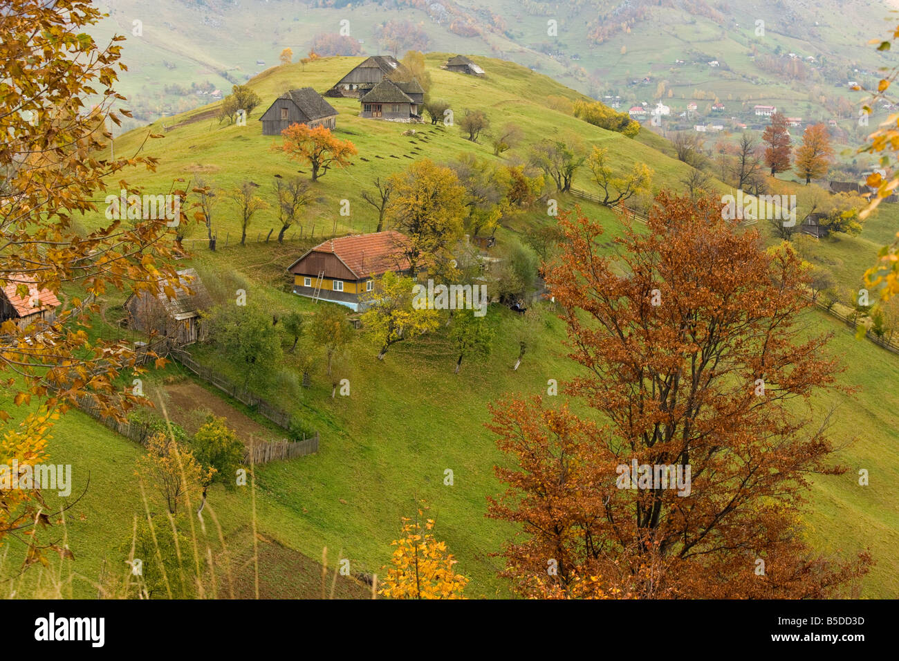 Old farmhouses in a beautiful pastoral montane landscape with traditional agriculture Piatra Criaulu Mountains autumn - Stock Image