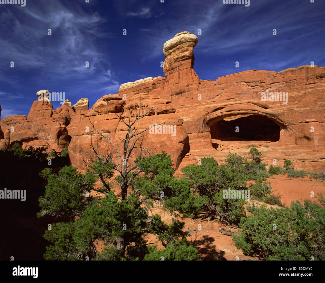 Tower Arch Klondike Bluffs Arches National Park Utah United States of America North America - Stock Image