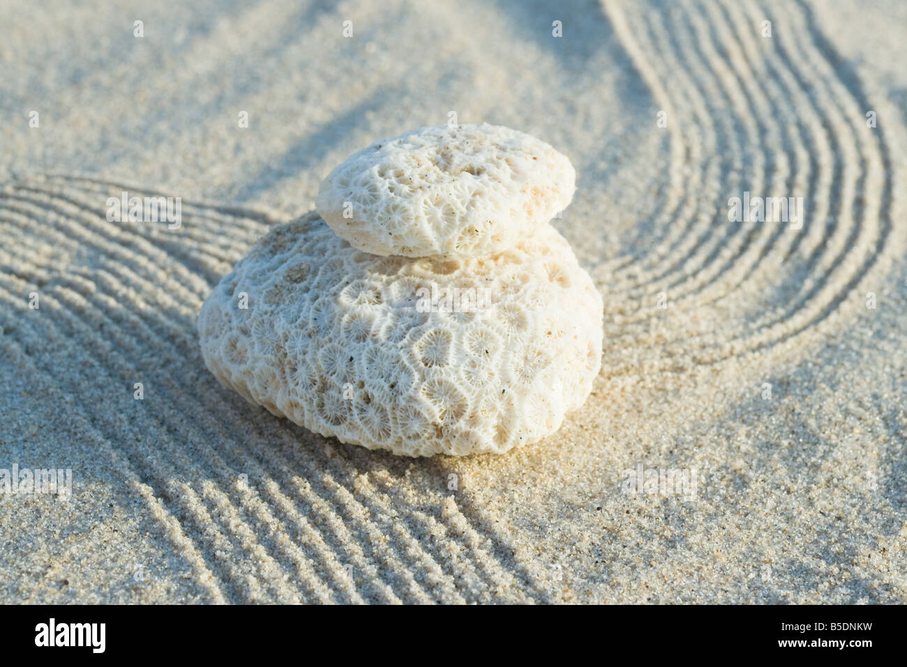 Stack of coral on raked sand - Stock Image