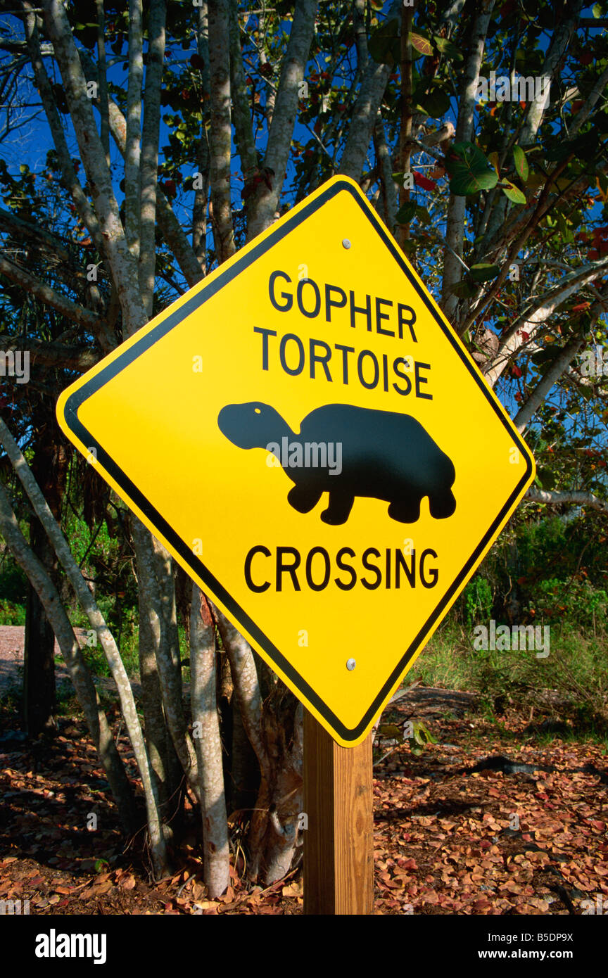 Road warning sign, J. N. Ding Darling Wildlife Refuge, Sanibel Island, Florida, USA, North America - Stock Image