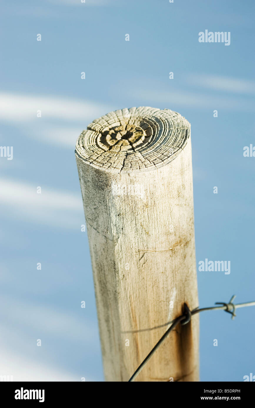 Wooden post with barbed wire, snow in background, close-up - Stock Image