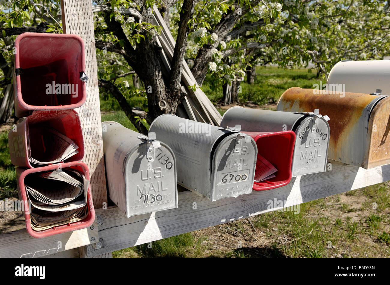 Mailboxes, Manson area, Washington State, USA, North America - Stock Image