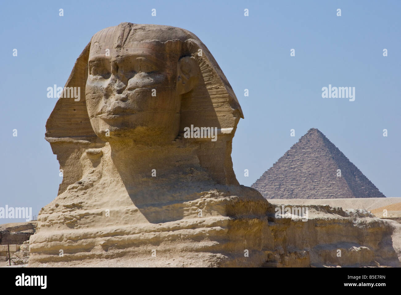 The Sphinx in Giza in Cairo Egypt - Stock Image