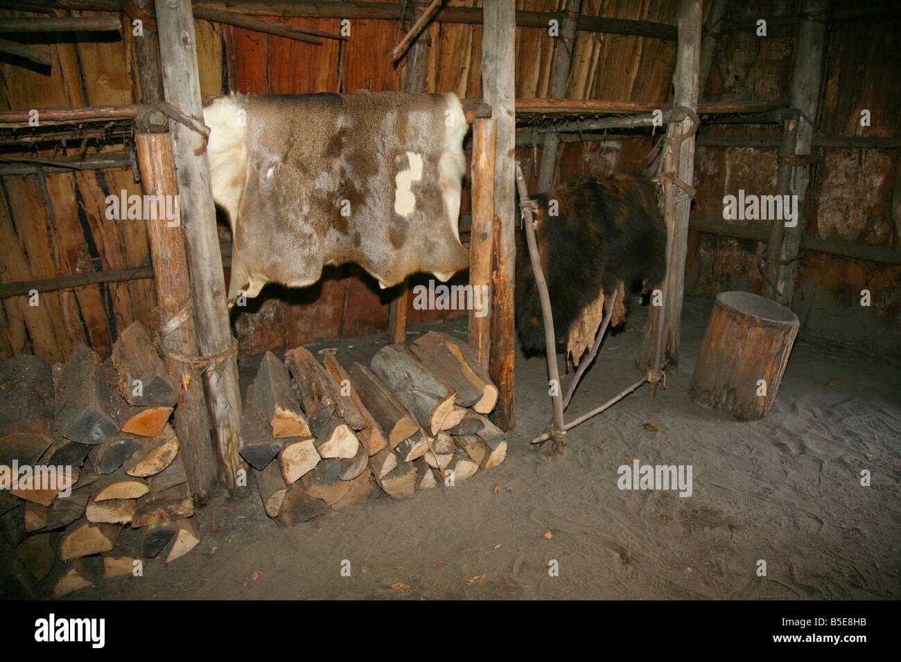 Indian Trappers Furs hung inside the Huron Long-house for curing at the authentic Huron Indian Village in Midland - Stock Image