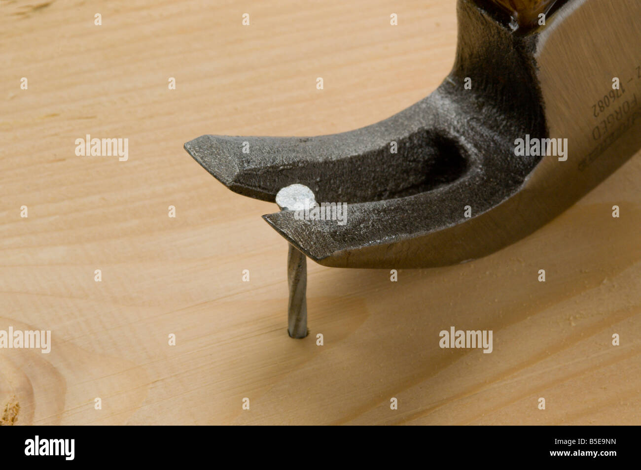 Claw hammer pulling nail out of wood - Stock Image