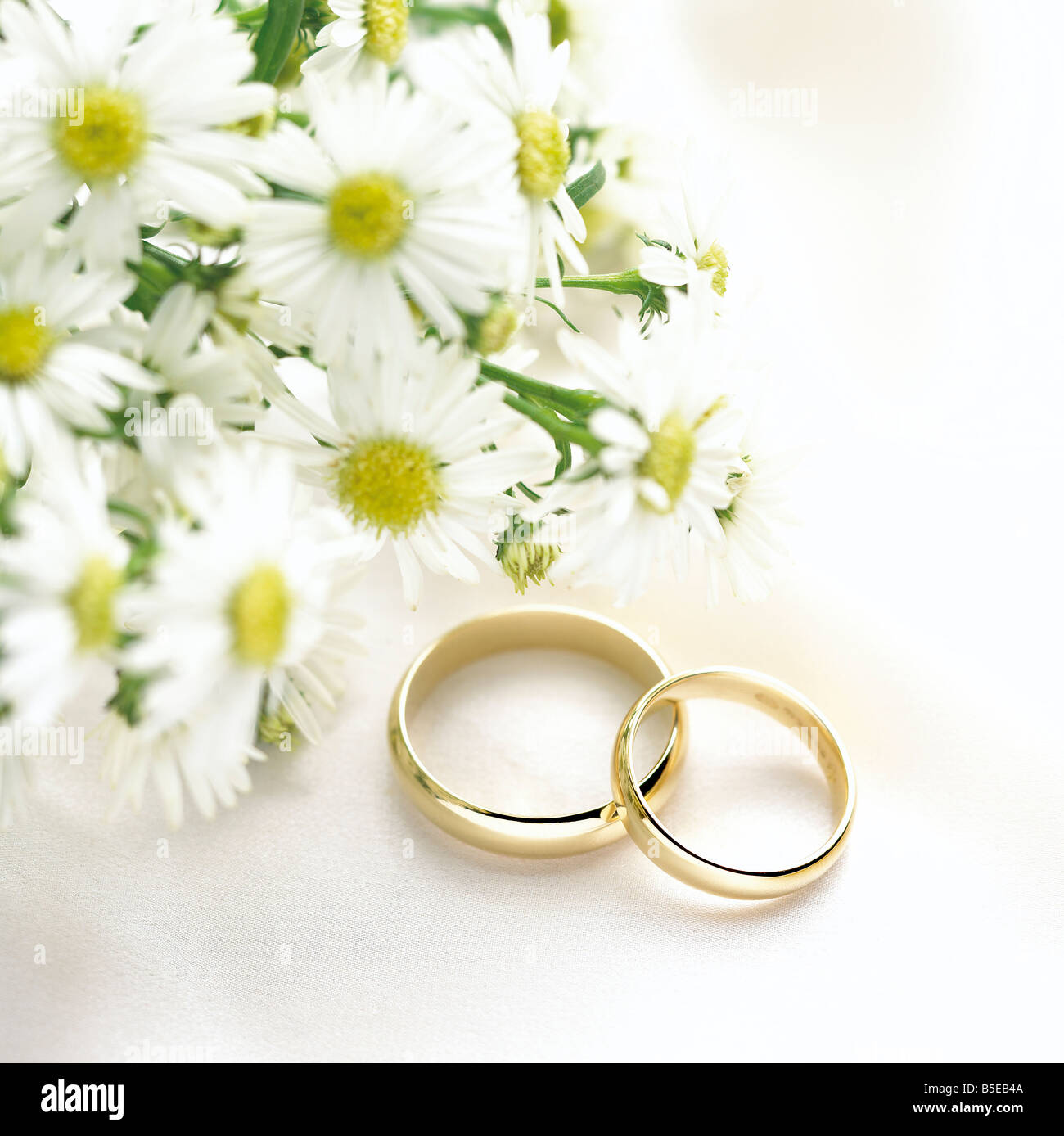 Two Gold Rings On White Textured Fabric Cloth Background With Daisy
