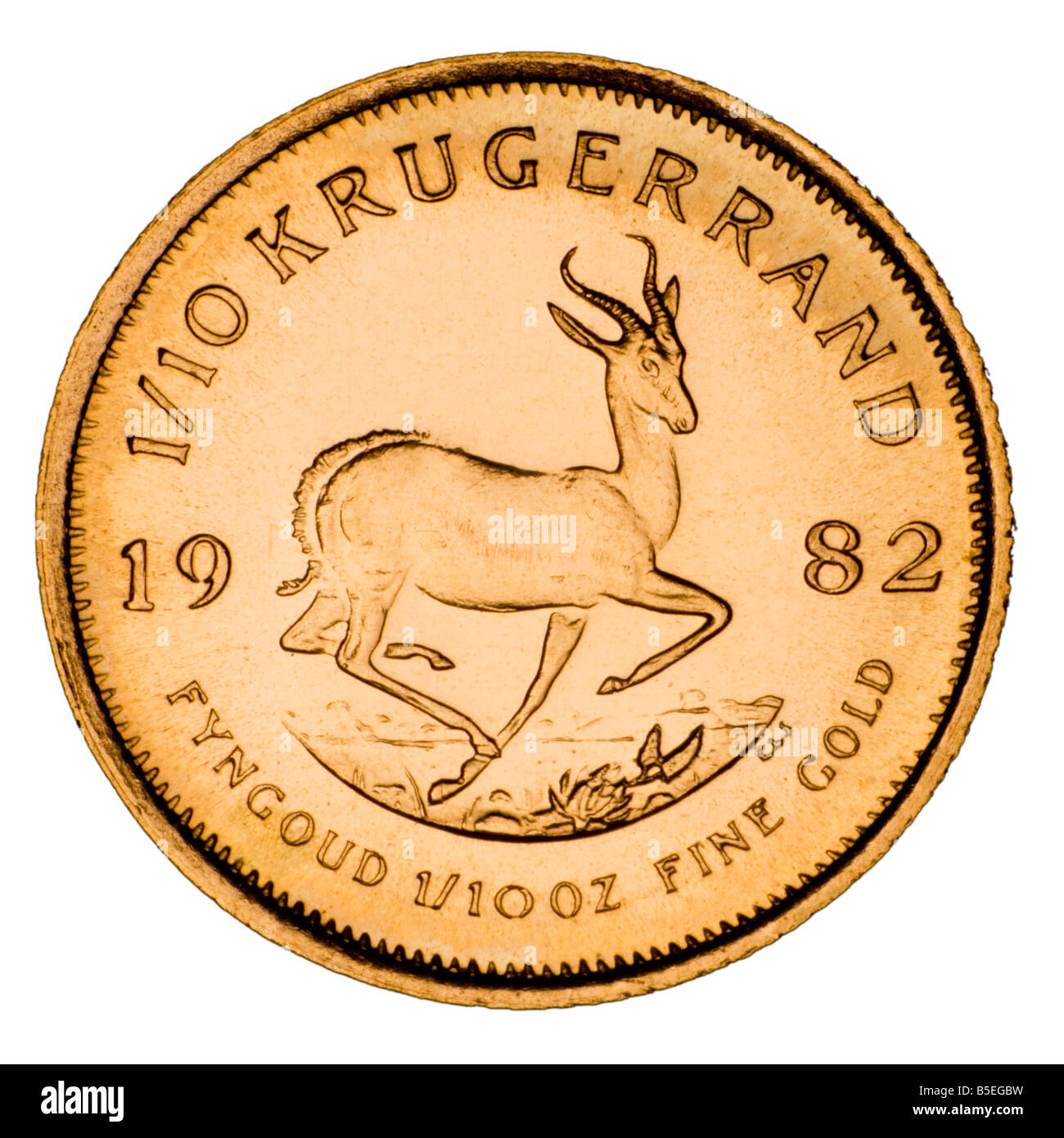 Gold 1/10th Krugerrand coin Reverse - Stock Image