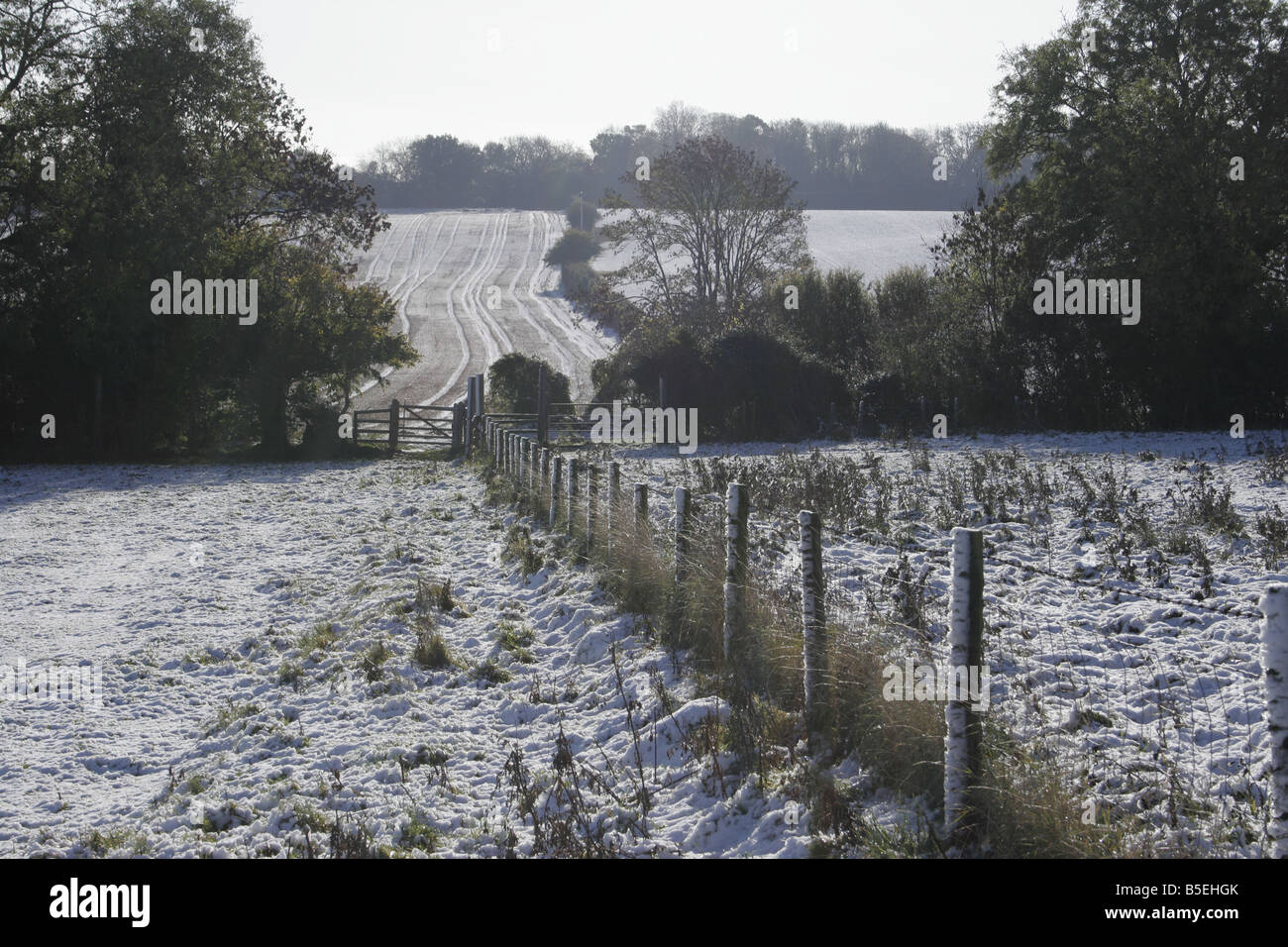 Deacon Hill in winter Bedfordshire Chilterns - Stock Image