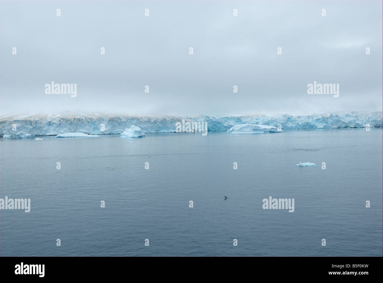 Abort edge of a glacier at the waterside - Stock Image